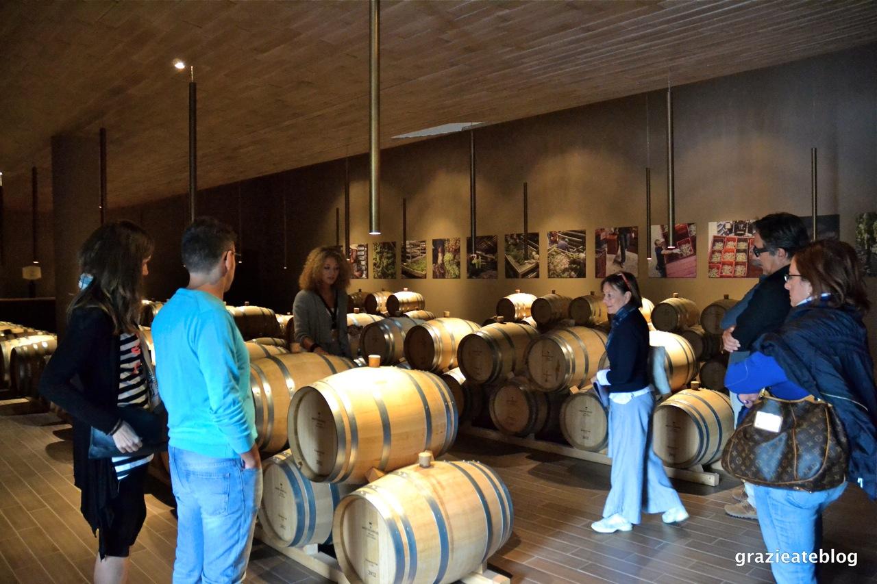 vinicola-antinori