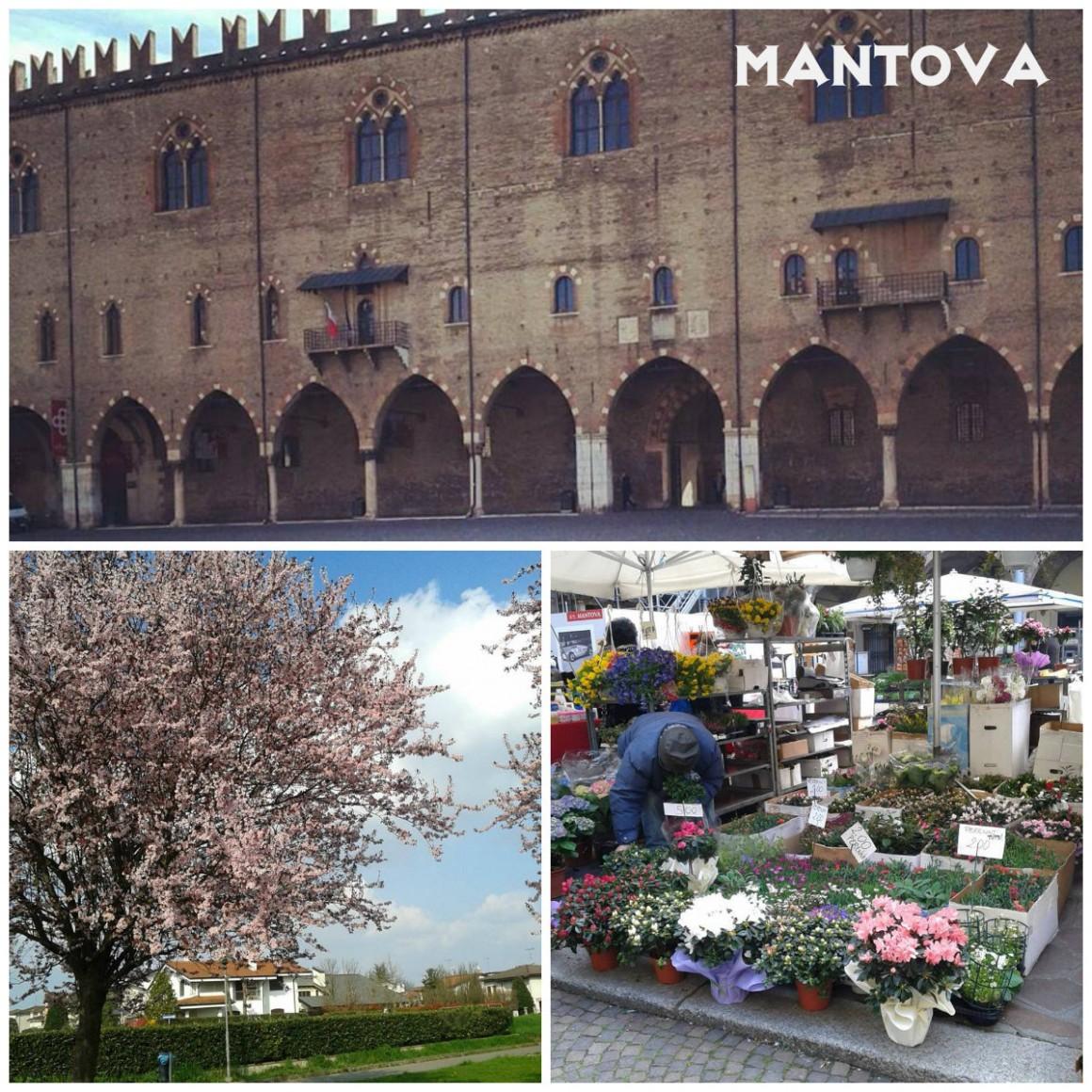 mantua-italia