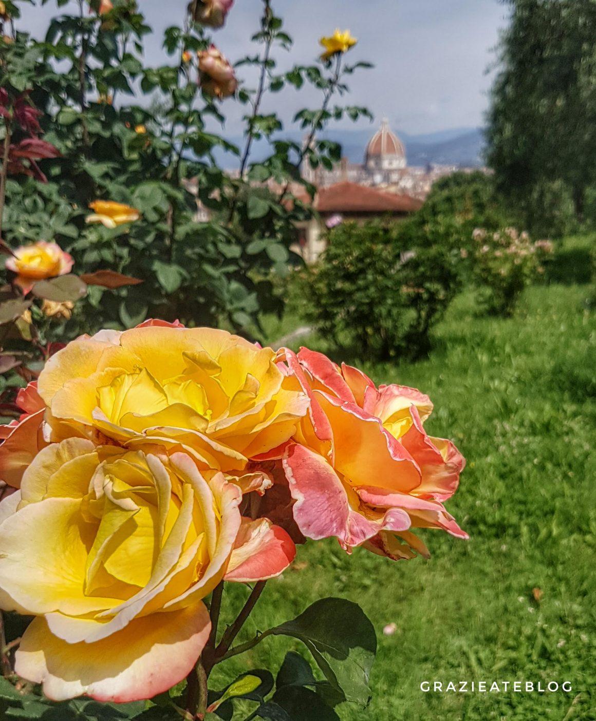 giardino-delle-rose